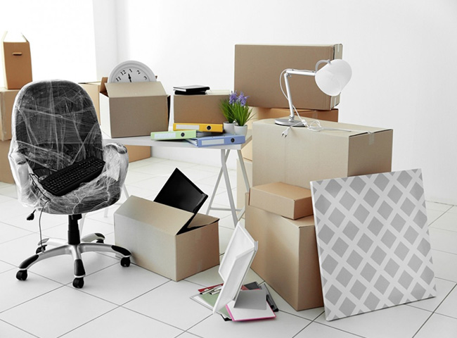 Website Design And Development Services USA